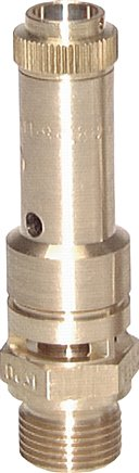 TÜV safety valves firmly set and sealed, DN 8 (0.2 - 50 bar)